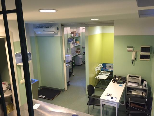 Tinteggiatura ecoattiva e finitura fotocatalitica presso Ambulatorio Veterinario a Varese